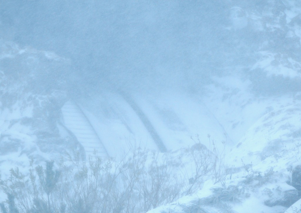 TDR_snow201404