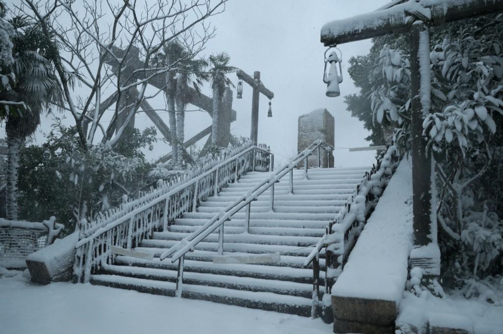 TDR_snow201406