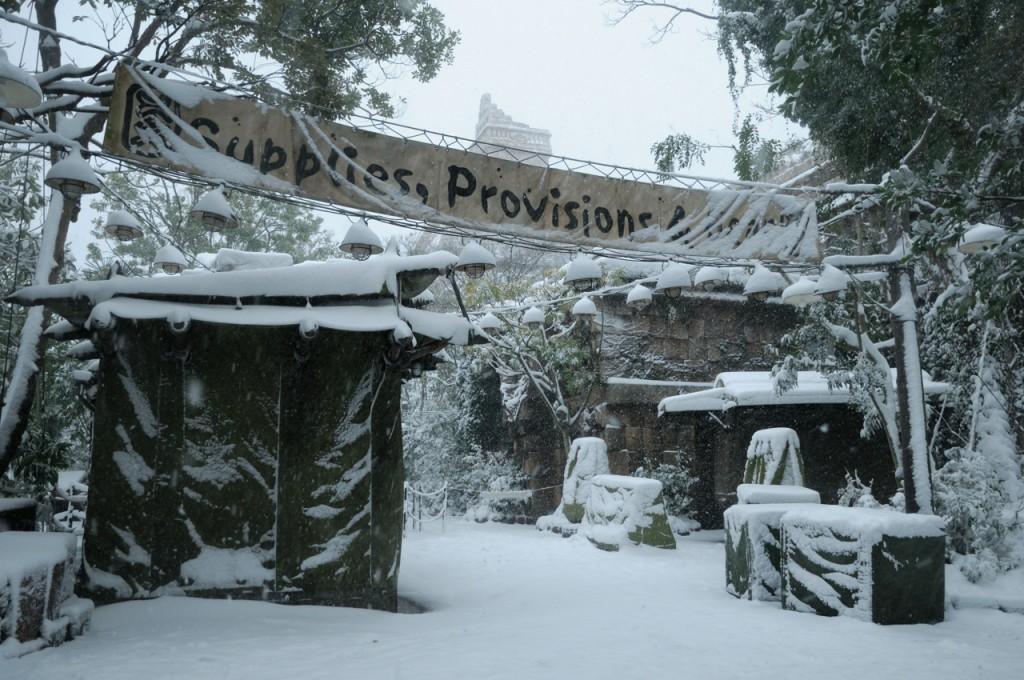 TDR_snow201409