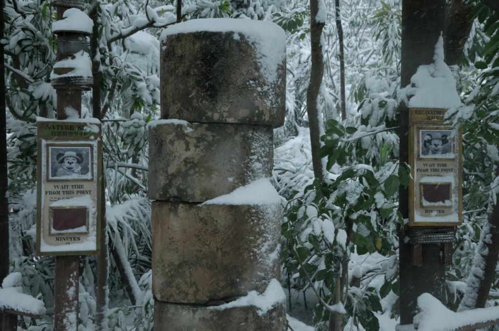 TDR_snow2014_22