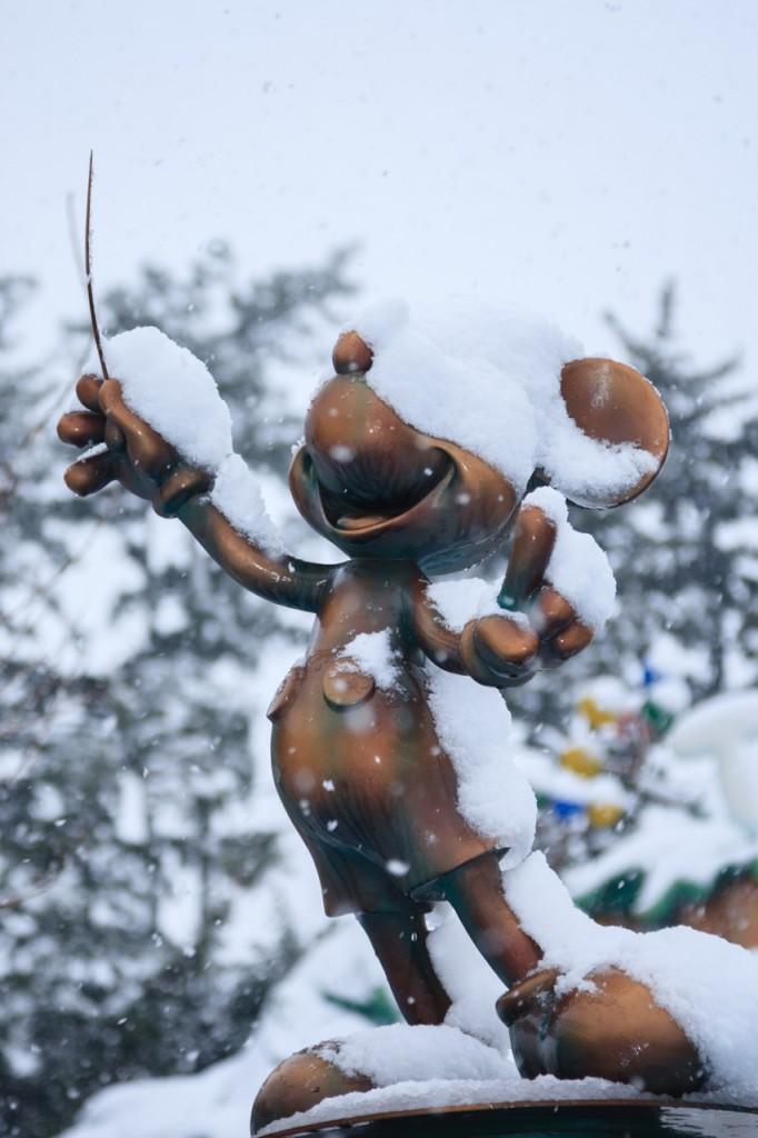 snow_tdr05