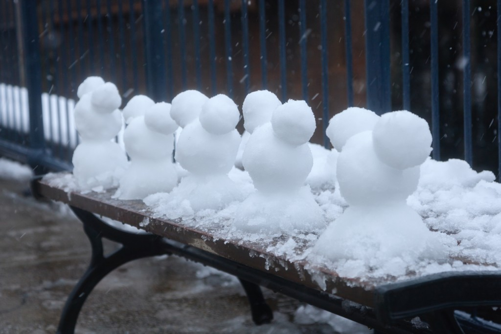 snow_tdr30