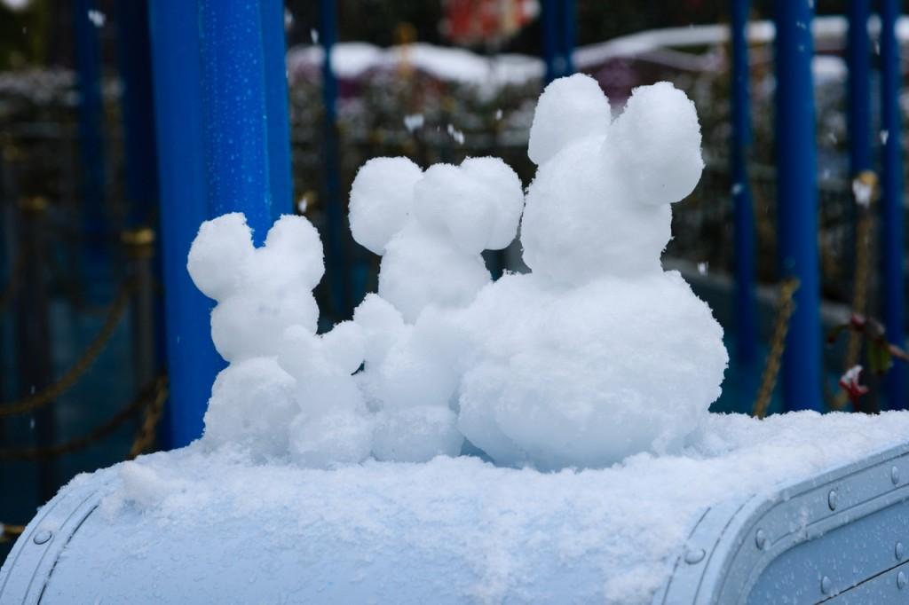 snow_tdr31