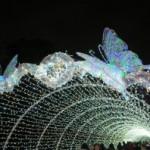 天下一の光の芸術祭「大阪城3Dマッピングスーパーイルミネーション」2月16日(日)まで!