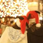 東京ディズニーランドでクリスマスデートを楽しむ