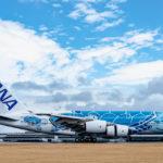 ANA、オール2階建ての大型旅客機「フライング・ホヌ」をハワイ線へ投入